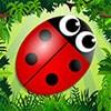 Bug Match Game - Arcade Games