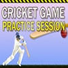 Cricket Game Game - New Games