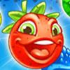 Tutti Frutti Multiplayer Game - Strategy Games